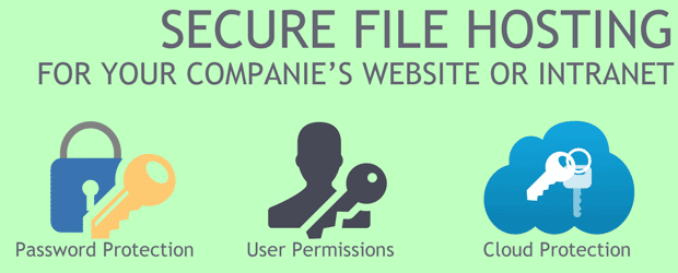 Secure File Hosting for your companie's website: Cloud Protection, User Permissions, Password Protection